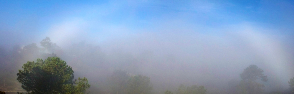 A non-spectral fogbow—the mist and a dancing arc of sunlight
