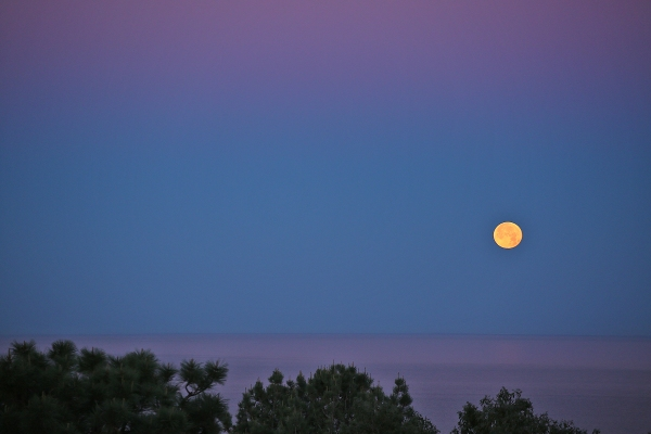 Moonset from the living room deck