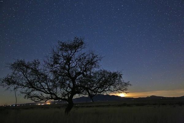 A setting moon in a star-filled Arizona sky