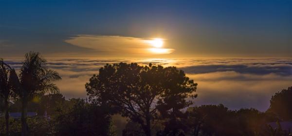 Sun, Cirrus, and fog aglow