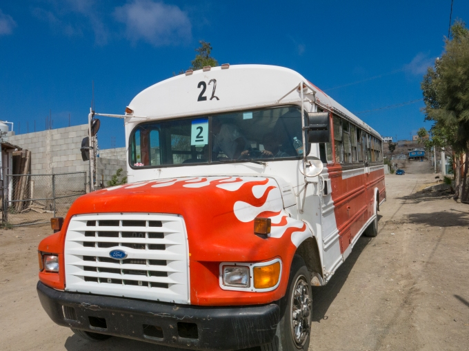 Inflamed Chicken and Pig bus