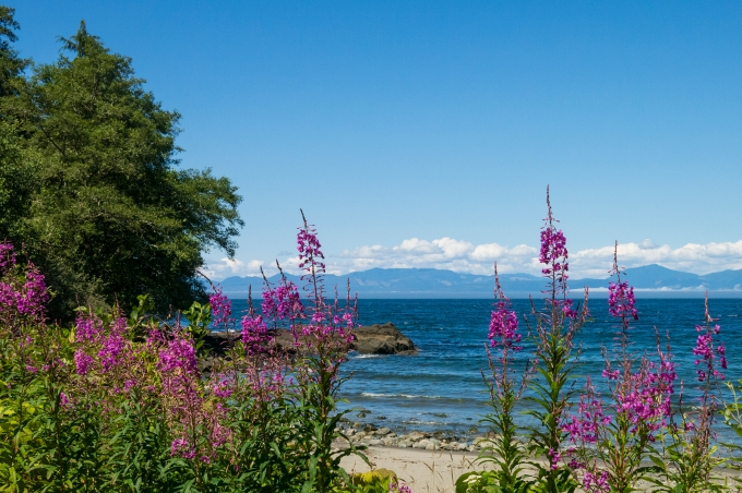 Near Neah Bay, with Vancouver Island across the Strait of Juan de Fuca.