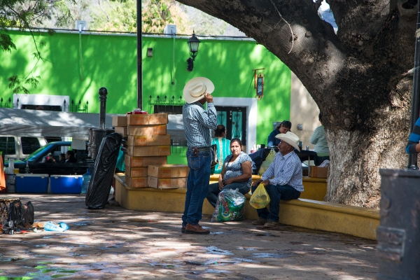 Álamos plaza scene