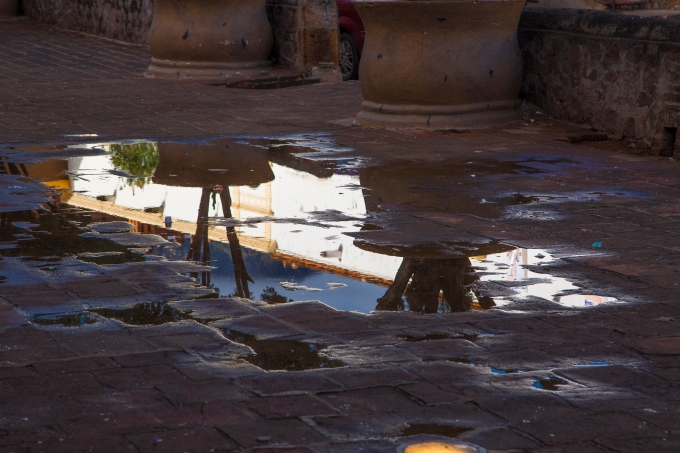 Morning puddle view