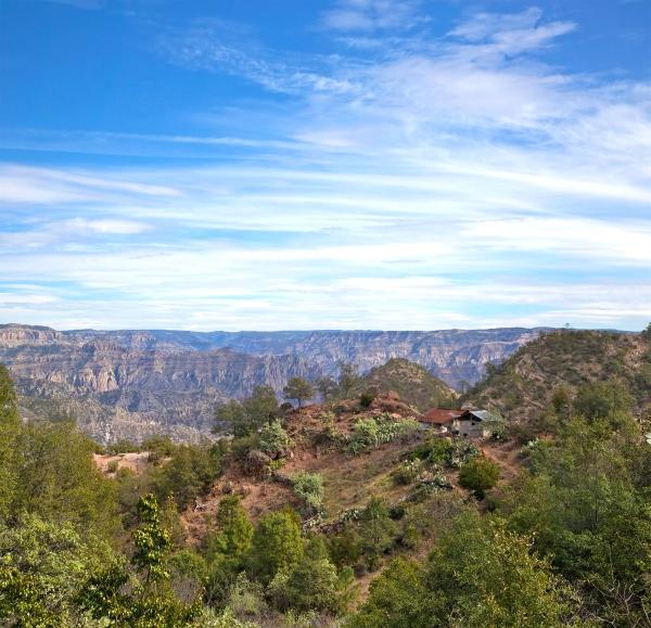 Tarahumara casita