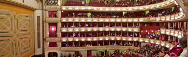 Vienna State Opera House from our box
