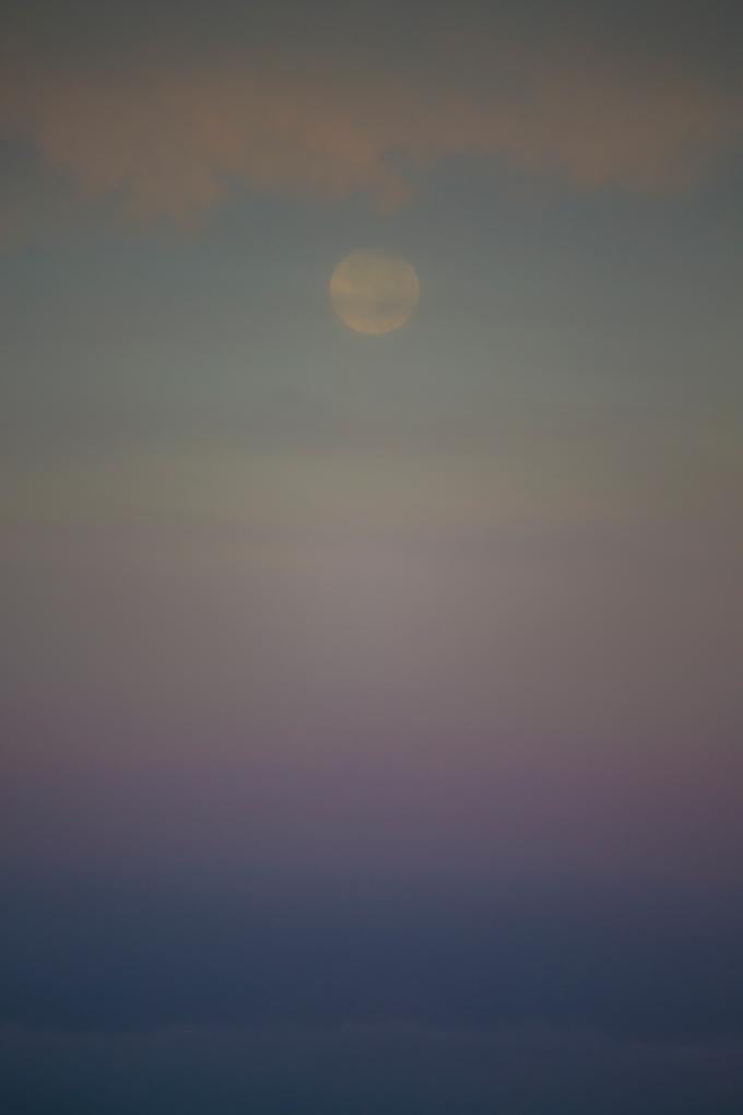 Pastel moonset