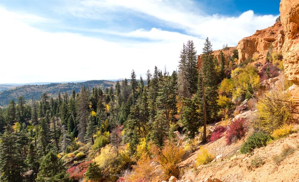 cascade-falls-trail