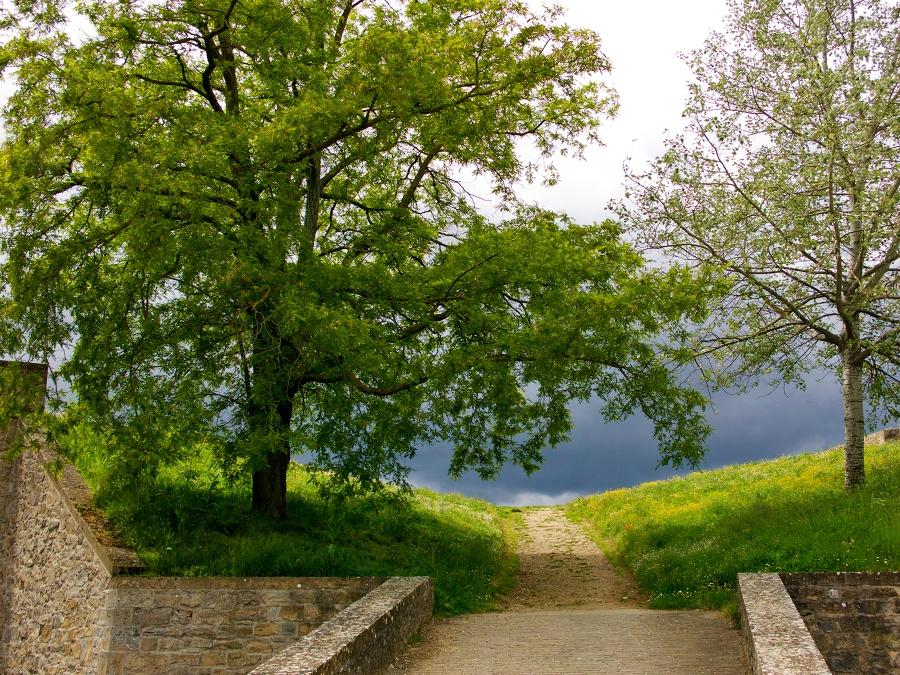 Pamplona trail