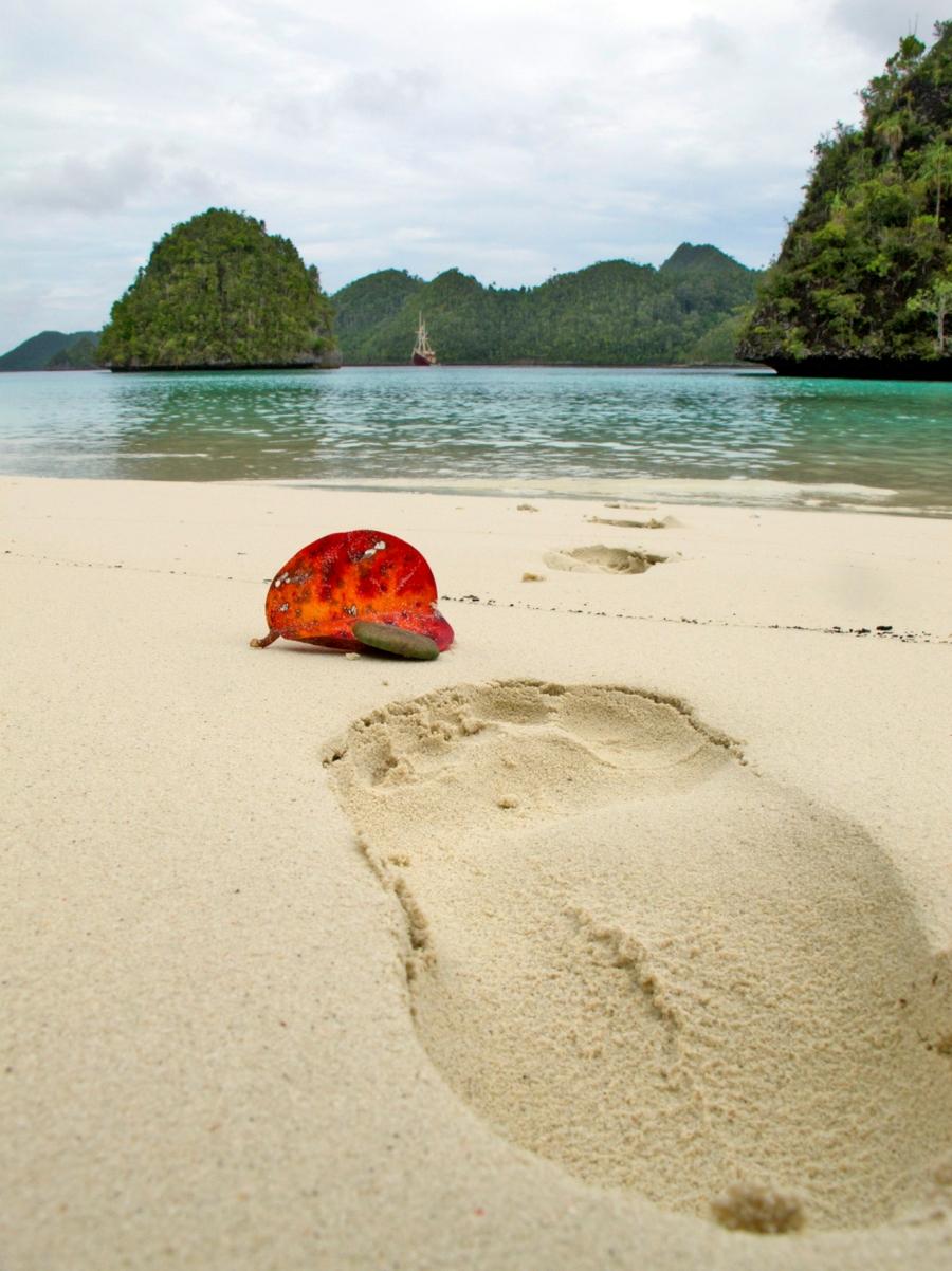 Tuesday's footprint